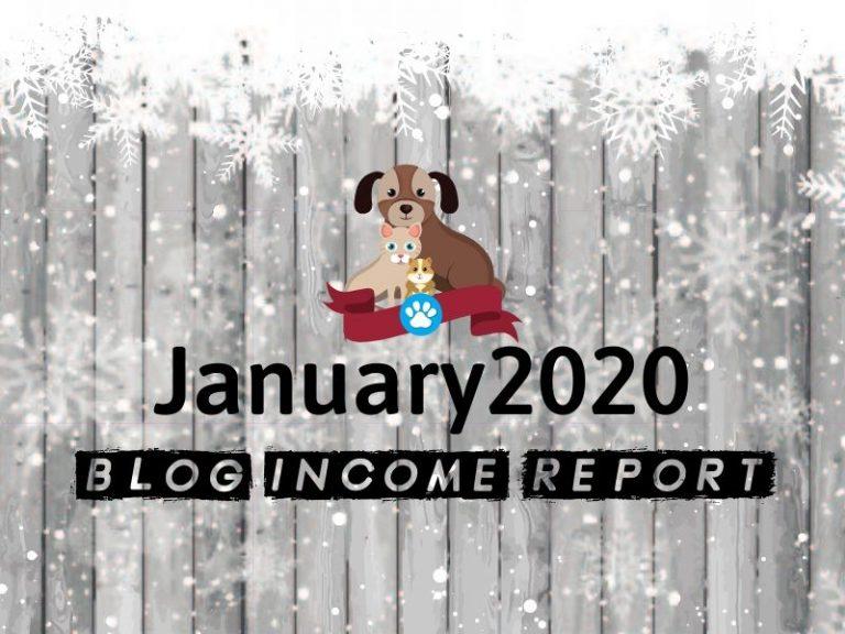 Niche Site Project 1 – January 2020 Update